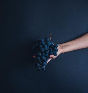 blaue Trauben